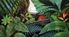 jungle.jpg (700×374)