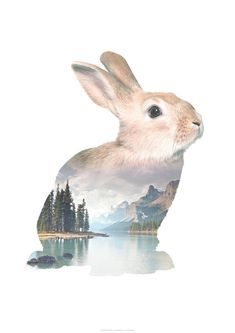 Faunascapes RABBIT Animal Double Exposure Art Print by WhatWeDo available on http://etsy.faunascapes.dk
