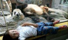 animal best friends | Image Showroom: Kids and Animals Best Friends