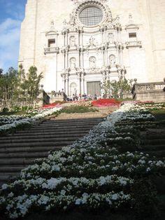 Escales de la Catedral - Girona Temps de Flors 2013