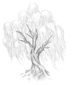 Willow tree meanings includes magic, healing, inner vision and dreams. My favorite tree! Weeping Willow Tattoo, Willow Tree Tattoos, Tree Sketches, Art Drawings Sketches, Willow Tree Art, Tree Drawings Pencil, Art Du Croquis, Tree Tattoo Designs, Tattoo Ideas