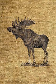 INSTANT DOWNLOAD Vintage Moose Illustration Download and
