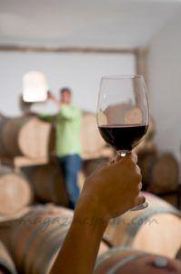 Cómo catar un vino: Parte III - Fase gustativa