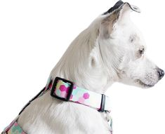 Duffy, Fanny Pack, Pitbulls, Dogs, Animals, Hip Bag, Animales, Animaux, Pitt Bulls