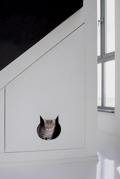 cat cave under stairs for litter