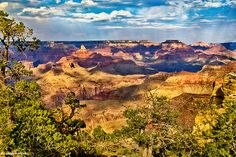 West Rim Grand Canyon National Park by Nadine and Bob Johnston