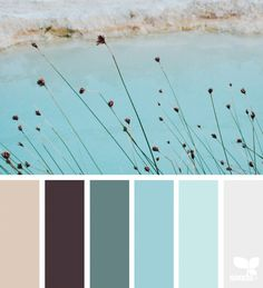 { color nature } image via: @arasacud