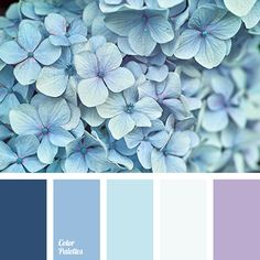 Blue Color Palettes, cold shades, color matching, color palette for interior, color solution for home, dark-blue, hot blue, light-blue shades, lilak, pale blue, sky blue, Violet Color Palettes.
