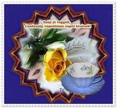 Decorative Plates, December, Reptiles, Roses, Facebook, Good Morning, Pink, Rose