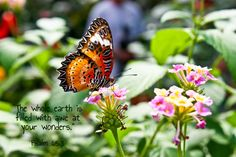 Psalm 65:8, Bible Verses, Scripture Art, Bible Art, Inspirational, Scripture Quotes, Bible Quotes, Scripture Verses, Faith