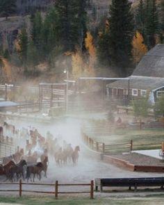 C Lazy U Ranch - Granby, Colorado #Jetsetter