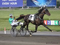 Meadowlands Racing & Entertainment - The world' s greatest harness racing.  Home of the Hambletonian & the Meadowlands Pace