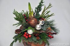 #Reserveer tijdig je #Kerst #Workshop... http://www.bissfloral.nl/blog/2014/10/10/reserveer-tijdig-je-kerst-workshop/