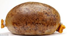 the most famous traditional Scottish foods -- haggis. To make haggis, first chop up the liver, heart and lungs of a sheep and mix them with diced onion, spices and oatmeal. Then pack the mixture in a sheep's stomach, tightly secure the ends and boil it for a few hours.