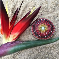 Shades of Red and Warm Colored Dot Painted Stone, Original Hand Painted Rock Art, Mandala Stone, Nature Art