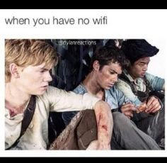 Gladers demonstrate how you feel without wifi - Maze Runner humor Newt Maze Runner, Maze Runner Funny, Maze Runner Thomas, Maze Runner Movie, Maze Runner Quotes, Thomas Brodie Sangster, Dylan O'brien, Maze Runner Trilogy, Maze Runner Series