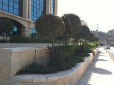 Jerusalem Technology Park