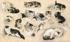 Henriette Ronner-Knip (Dutch, 1821-1909) A study of kittens, ink and wash heighted with white
