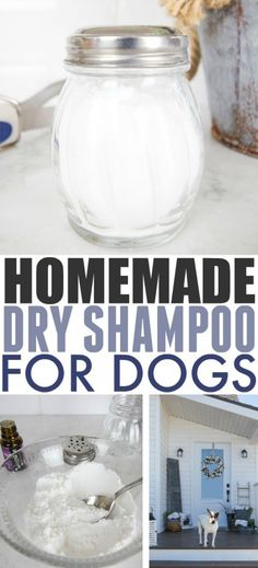 Homemade Dry Shampoo for Dogs - As humans, we love how convenient dry shampoo is, but did you know that a version of it can be helpful for dogs too? Try this homemade dry shampoo for dogs reci. Diy Shampoo, Dry Dog Shampoo, Shampoo Seco, Flea Shampoo For Dogs, Homemade Dog Shampoo, Natural Dog Shampoo, Dog Care Tips, Pet Care, Puppy Care