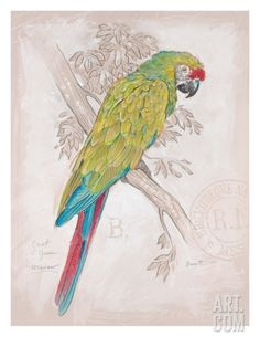 Chartreuse Tropical Giclee Print by Chad Barrett at Art.com