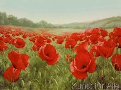 Ruane Manning - Field of Poppies