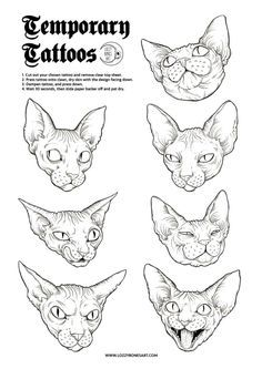Image result for Geometric vector animal cat head