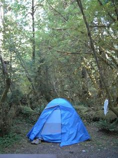 Hoh Campground, Olympic National Park