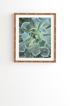 Lisa Argyropoulos Succulents II Framed Wall Art | DENY Designs Home Accessories
