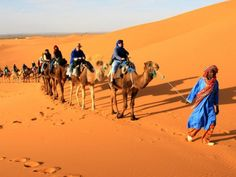 If you are dreaming about a camel trek in the heart of the Sahara Desert and to spend a night in the nomade tent, our team can help you to get an unforgetable tour to the Sahara Desert Welcome between us. For more info @ https://www.nomadexperience.com/