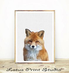 Fox Print, Animal Poster, Woodlands Nursery Decor,Digital Download, Large Printable Photo Poster, Babies Room Fox Art,   #366