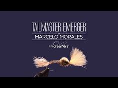 Fly Tying: Tailmaster Emerger - Find the best Fly Tying Videos in Fly dreamers. Dry Flies, Streamers, Nymphs, Emergers, Classic Flies, Saltwater Flies and much more. | Fly dreamers