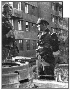 SS Panzer Truppen.