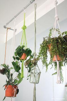 macrame plants hanging