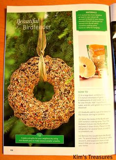 I have a super easy and inexpensive gift to show you today.  The above birseed wreath!   I found it in this magazine, Sandra Lee Christmas...