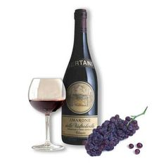 vino..AMARONE..the best italian.  We are making this now.