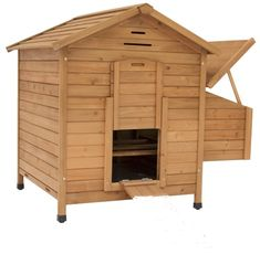Maple Chicken Coop. Ideas-4-pets