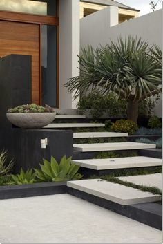 Tim Davies Landscaping. floating concrete steps and plantings at this entryway