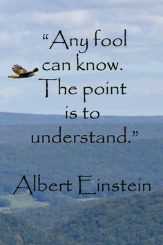 """""""Any fool can know. The point is to understand."""" -- Albert Einstein -- On image from Hawk Mountain Sanctuary, Pennsylvania, by Dr. McGinn -- As natural partners, travel and learning create fresh experiences to stimulate and renew; Words Quotes, Wise Words, Me Quotes, Motivational Quotes, Inspirational Quotes, Great Quotes, Quotes To Live By, Experiential Learning, E Mc2"""