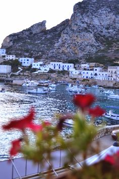 port view • Levanzo * Sicily