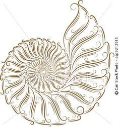 abstract seashell idea