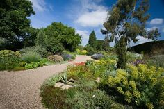 How to rercreate beth chatto's gravel garden