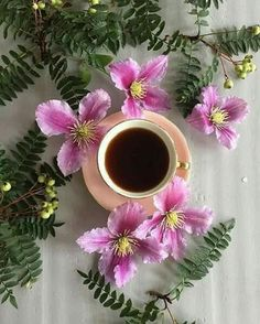 Coffee Vs Tea, Joe Coffee, Spiced Coffee, Coffee And Books, I Love Coffee, Coffee Cafe, Brown Coffee, Hibiscus Tea, Hibiscus Flowers