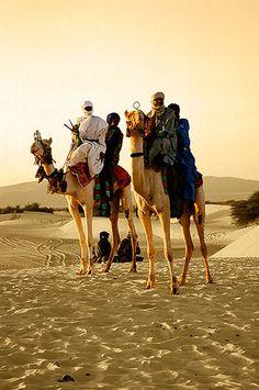 Tuaregs con sus camellos en el Festival au Dessert, Essakane -   Tuaregs with their camels in the Festival au Dessert, Essakane (January 2008)    www.vicentemendez.com
