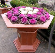 Image detail for -Flower Box - China Flower Box