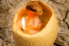 What starts out as a simple round candle, becomes a dinosaur emerging from bubbling hot wax.