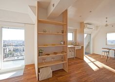 Tiny Apartment Gets Large Look With Partition Additions