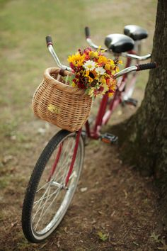 vintage wedding bike (photo by Landon Jacob)