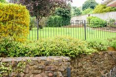 Views up the garden at Maxwelton. A wrought iron fence has been fitted to safeguard chlldren from falling over the wall. Heating Oil, Wrought Iron Fences, Log Burner, Vineyard, Bbq, Sidewalk, Cottage, The Unit, Wall