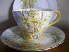 VINTAGE SHELLEY CHINA TRIO TEA CUP SAUCER PLATE