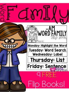 Pocket Full of Kinders!: Word Family Flip Books